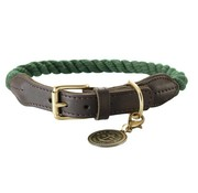 Hunter Dog Collar List Olive