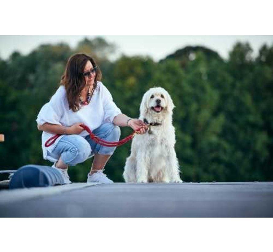 Verstelbare Hondenriem List Bordeaux