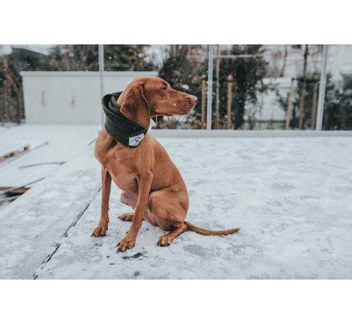 Hunter Dog Scarf Nancy Green