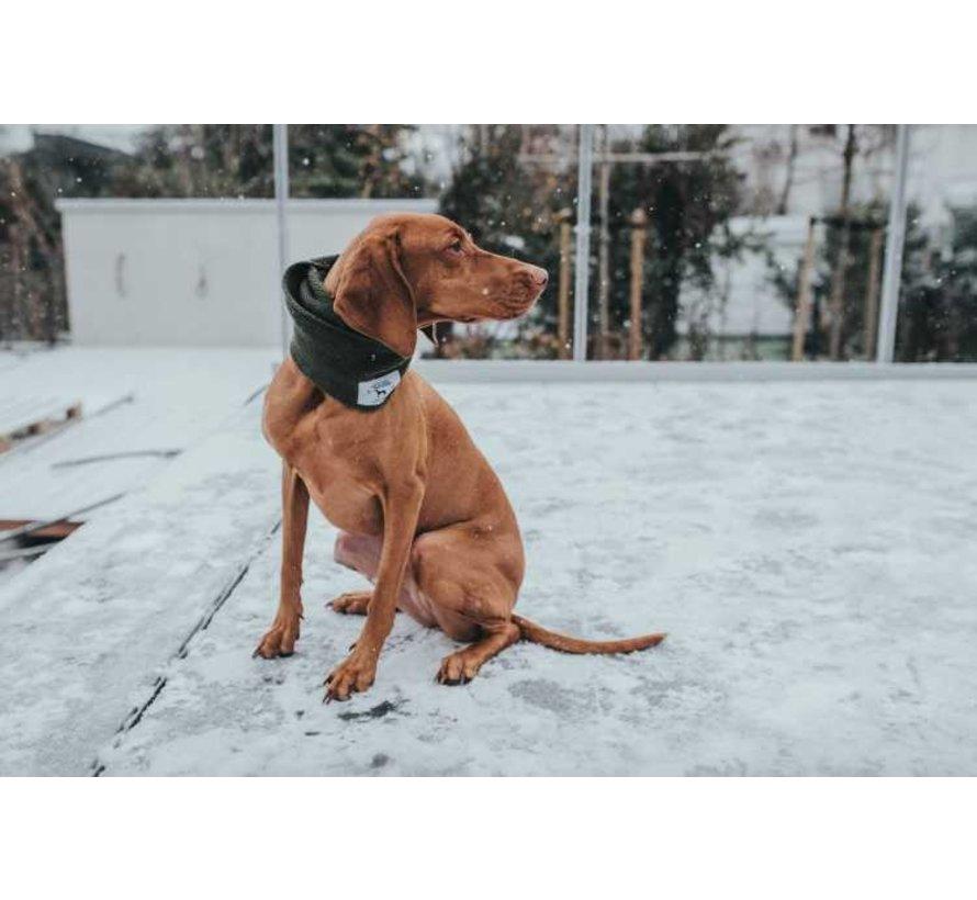 Hondensjaal Nancy Groen