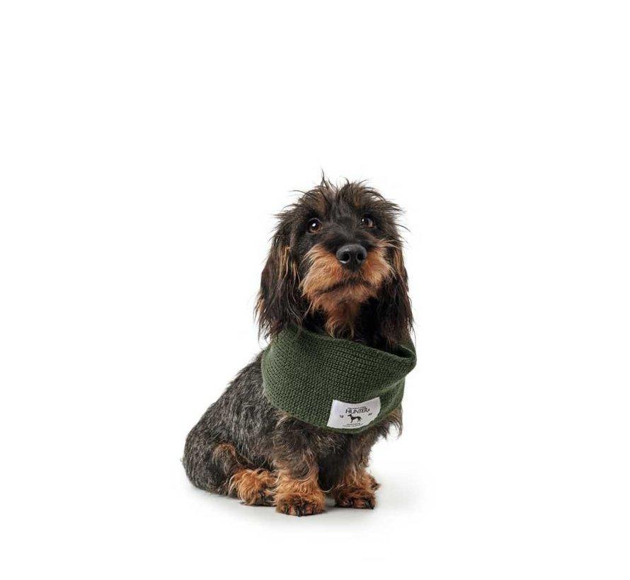 Dog Scarf Nancy Green