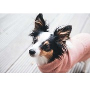 Hunter Dog Sweater Rögla Pink