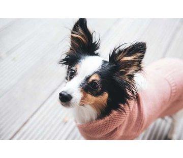 Hunter Dog Sweater Rögla Pink