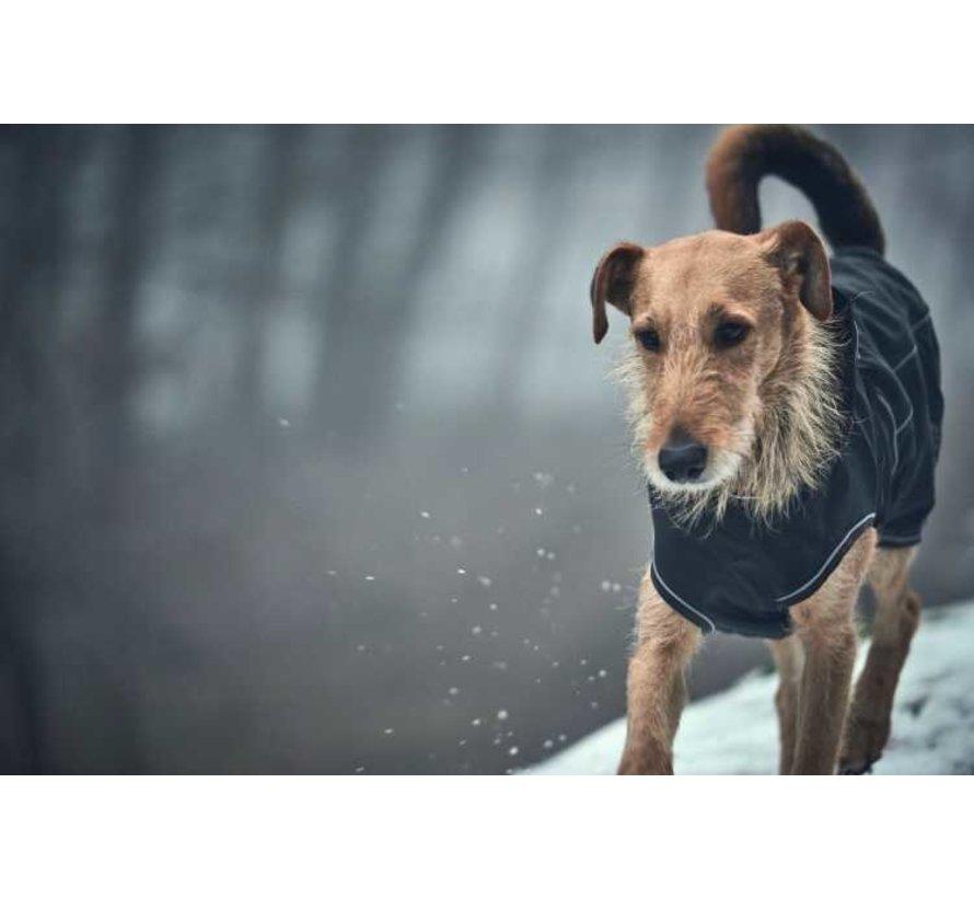 Hondenjas Uppsala Softshell