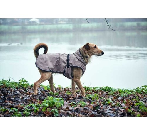 Hunter  Dog Coat Uppsala Taupe