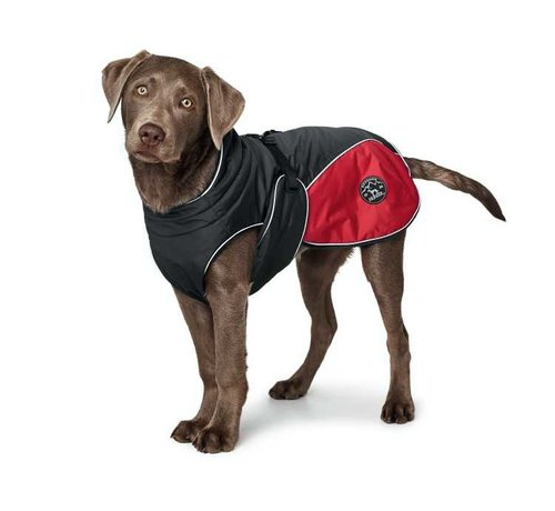 Hunter  Dog Coat Uppsala Cozy Red