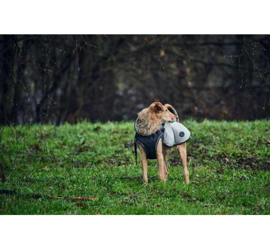 Hondenjas Uppsala Cozy Grijs