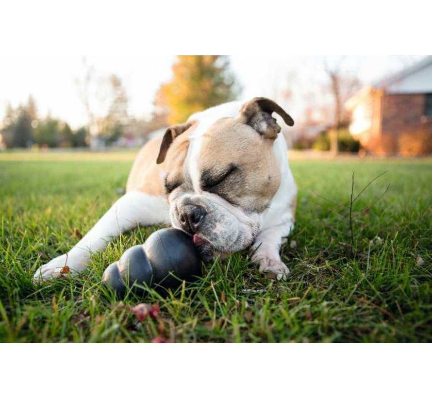 Hondenspeelgoed Extreme
