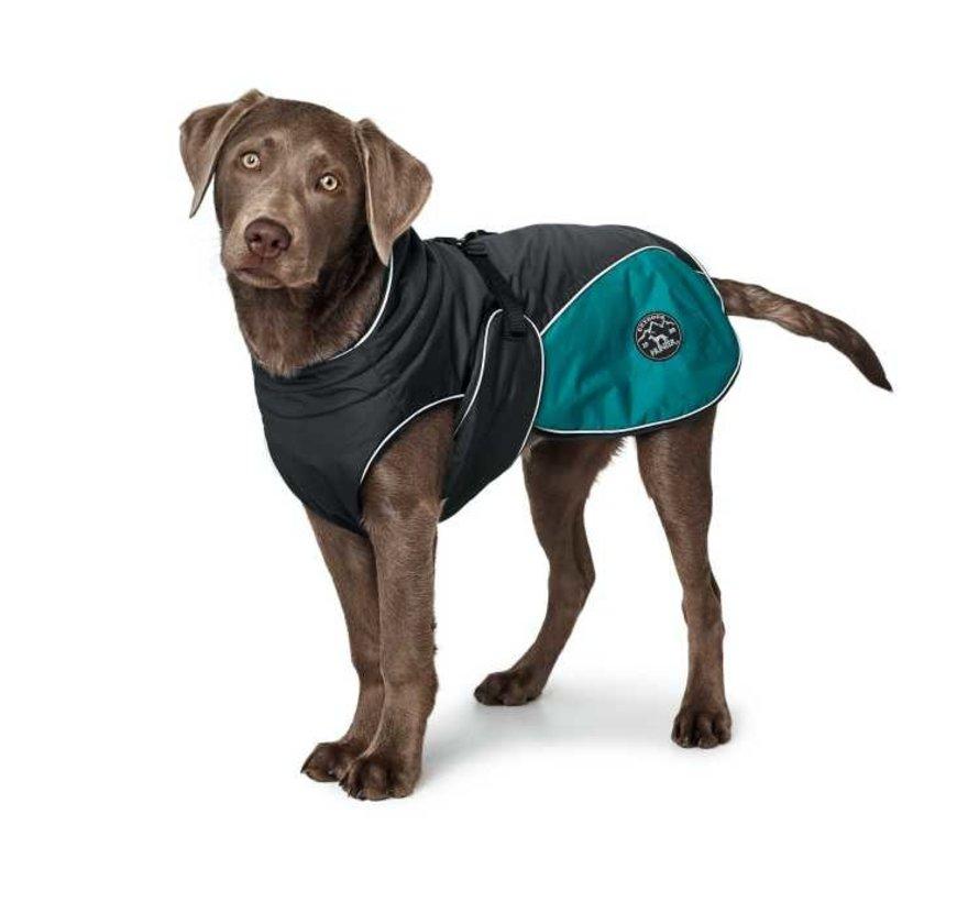Dog Coat Uppsala Cozy Teal