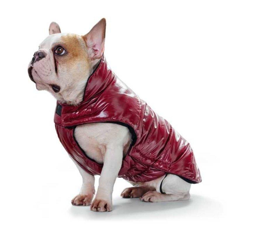 Dog Coat Tampere Red