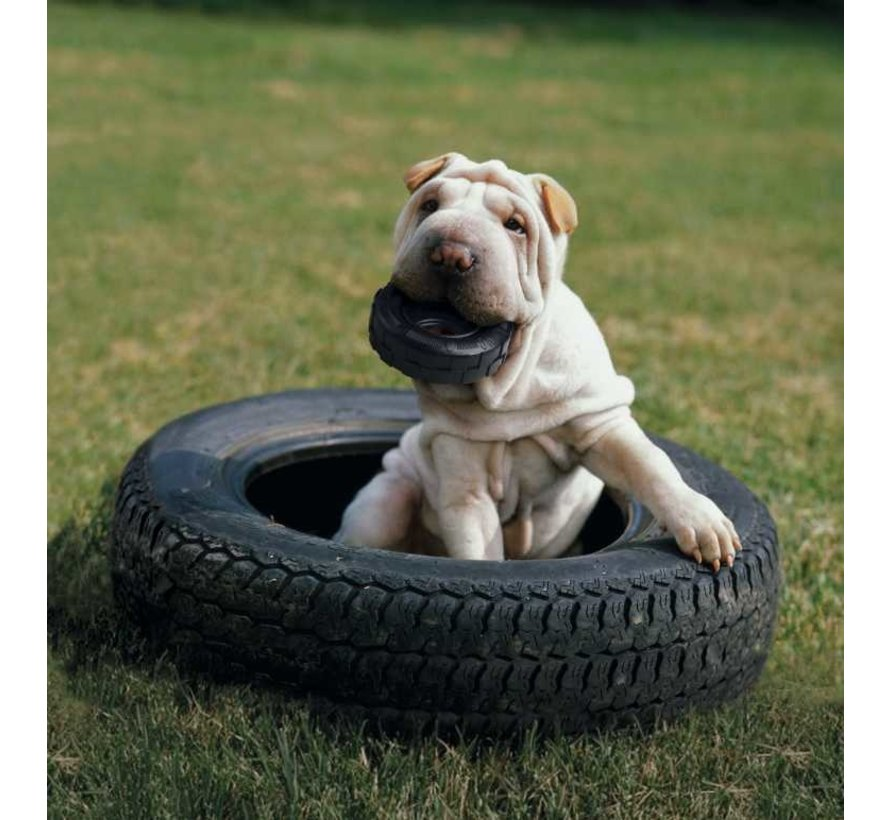 Hondenspeelgoed Traxx