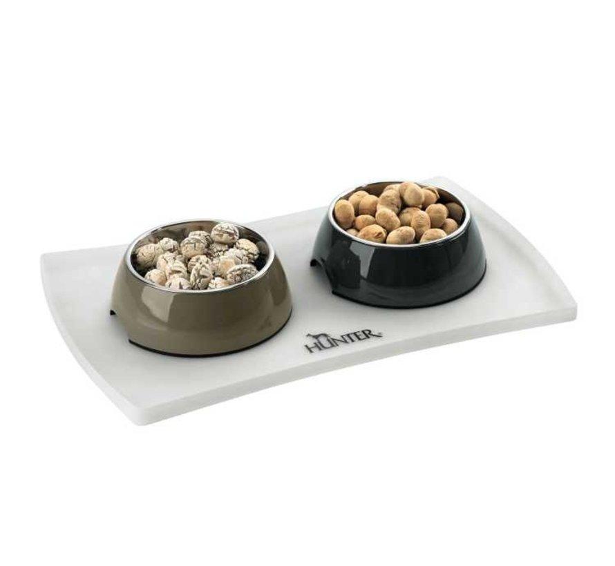 Food Bowl Base Selection Transparent