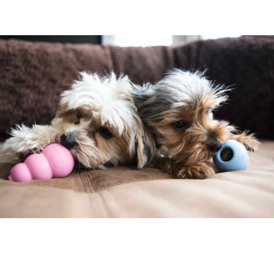 Dog Toy Classic Puppy
