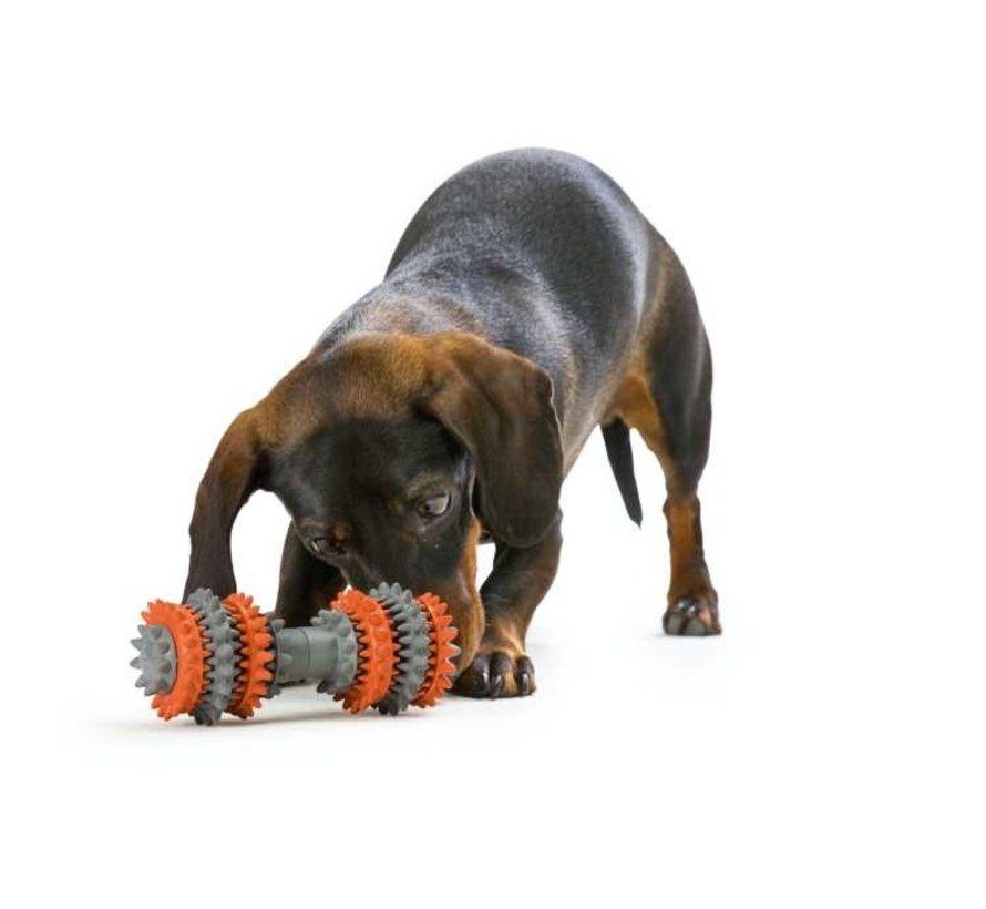 Hondenspeelgoed Tooth Cleaner