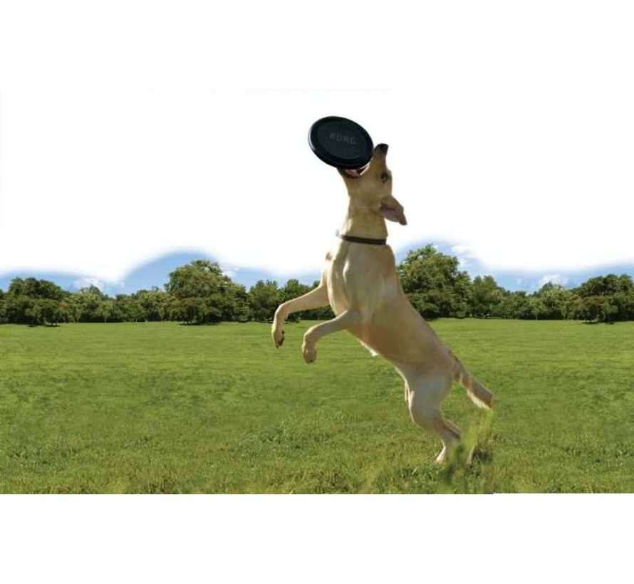 Hondenspeelgoed Extreme Flyer