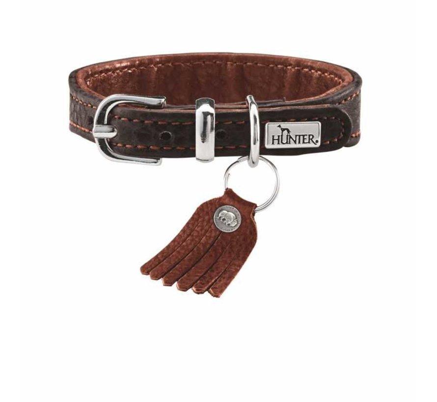 Dog Collar Cody Petit Dark Brown