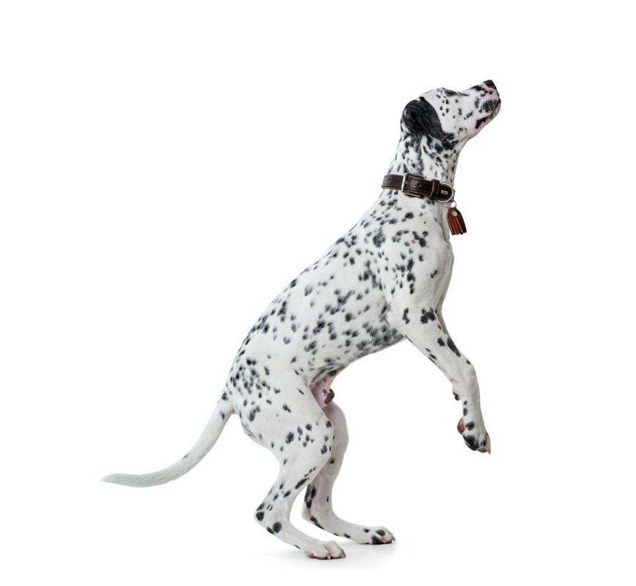 Hondenhalsband Cody Donkerbruin
