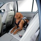 Hunter Dog Harness for the car Easy Comfort