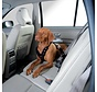 Dog Harness for the car Easy Comfort