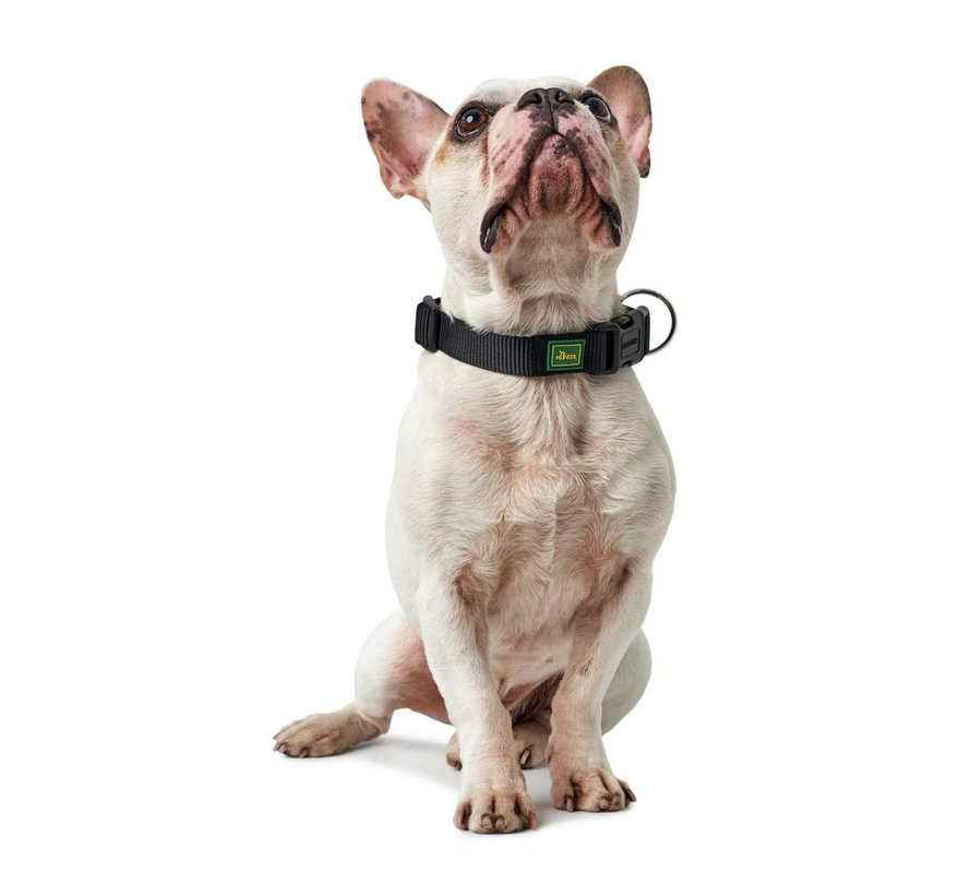 Dog Collar  Vario Plus Black