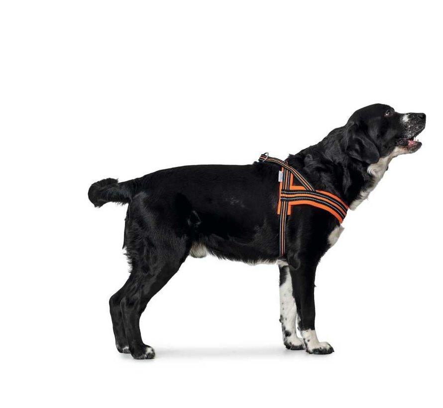 Hondenharnas Meldal Oranje