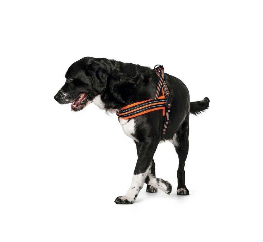 Dog Harness Meldal Orange