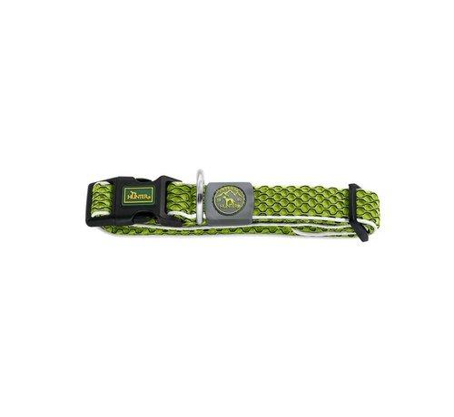 Hunter Dog Collar Hilo Vario Basic Lime