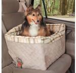 Hond en Auto