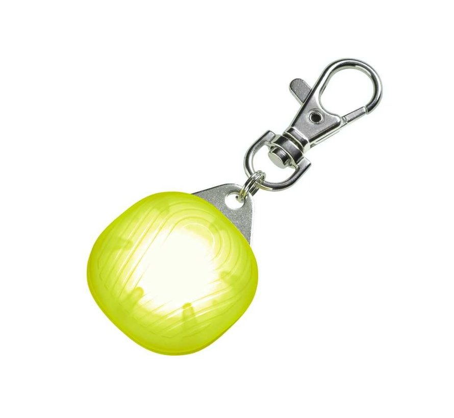 LED Safety Lamp for dogs