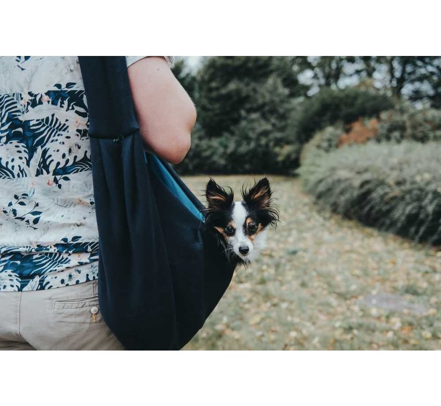 Dog Carrier Los Angeles Blue