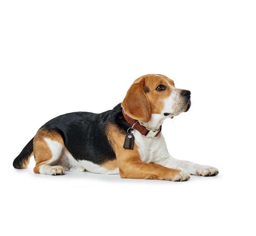 Dog Collar Cody Alu Strong Cognac