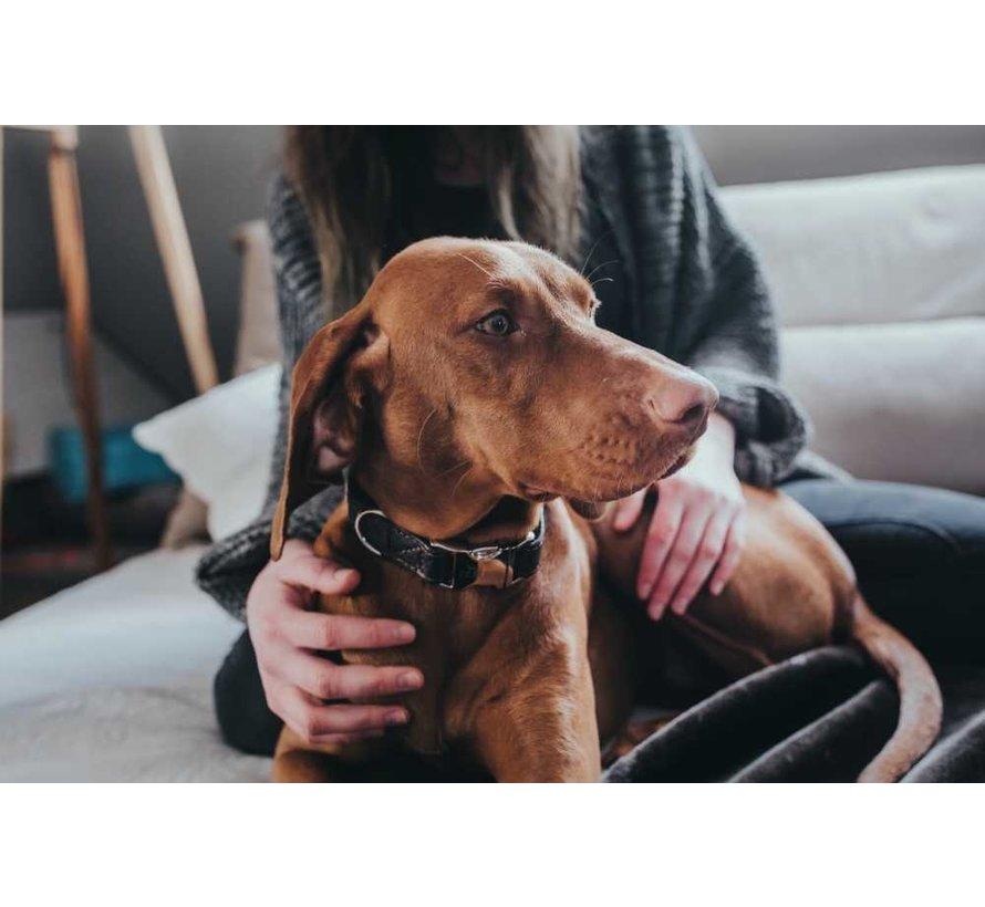 Hondenhalsband Cody Alu Strong Donkerbruin