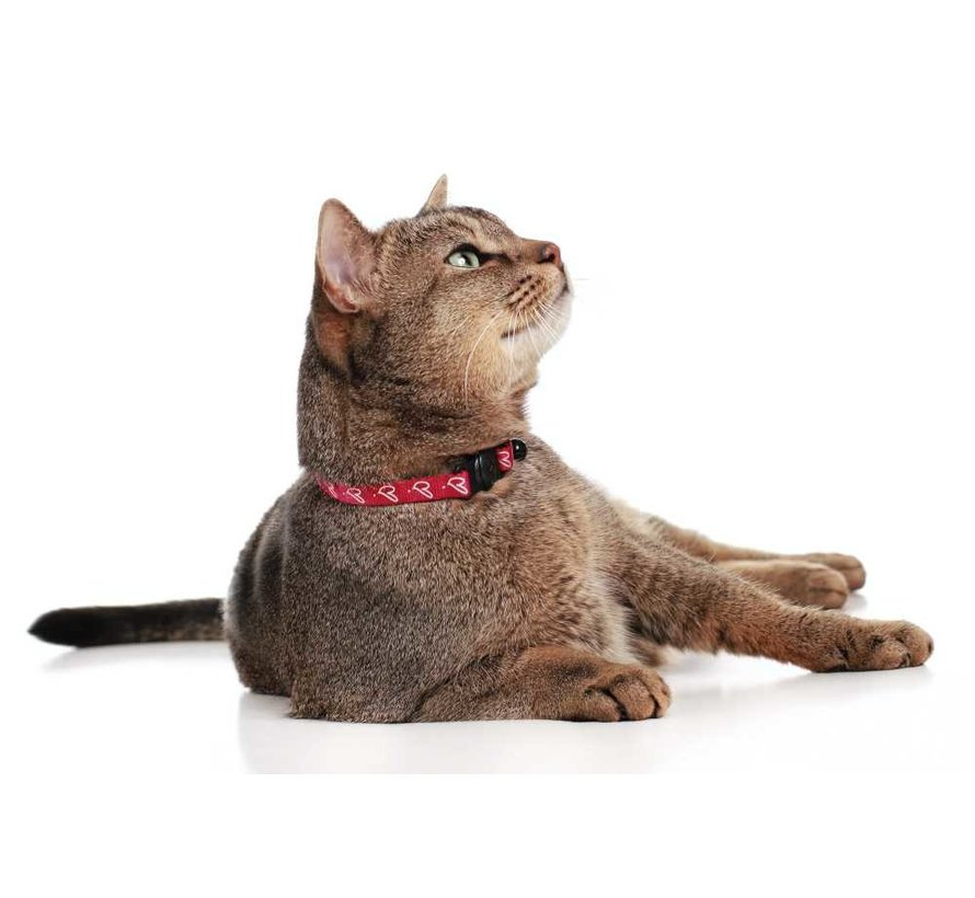 Kattenhalsband Laura Rood