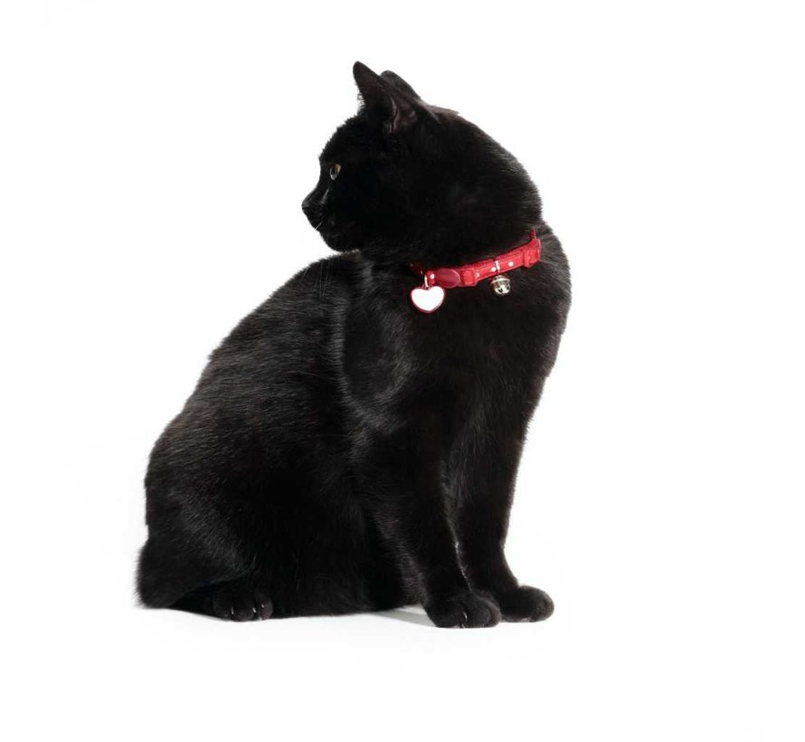 Cat Collar Glossy Dots Red