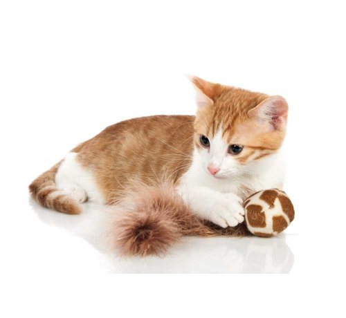 Hunter Cat Toy Ball