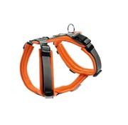 Hunter Dog Harness Maldon Orange