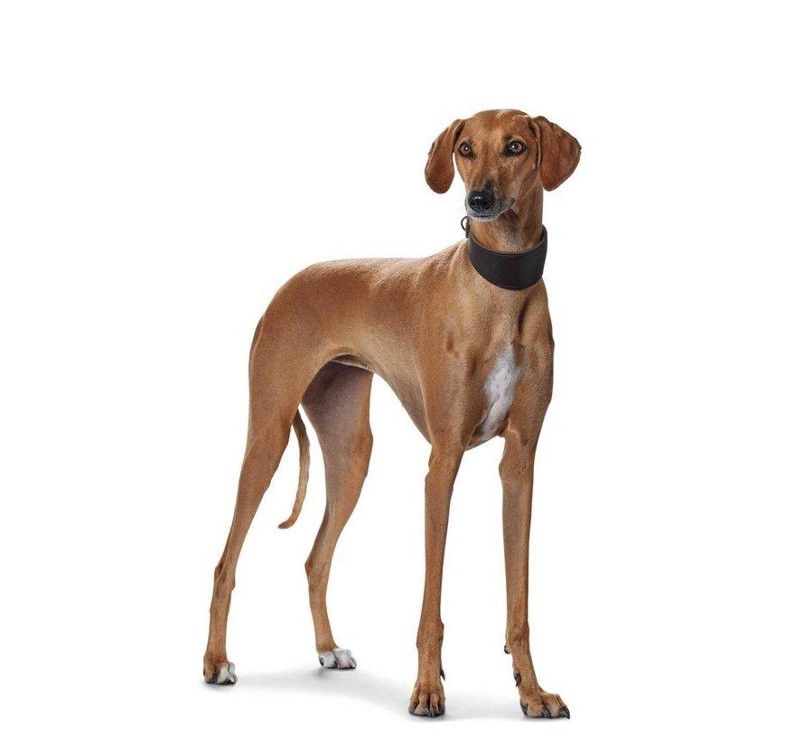 Greyhound Collar Super Soft Dark Black