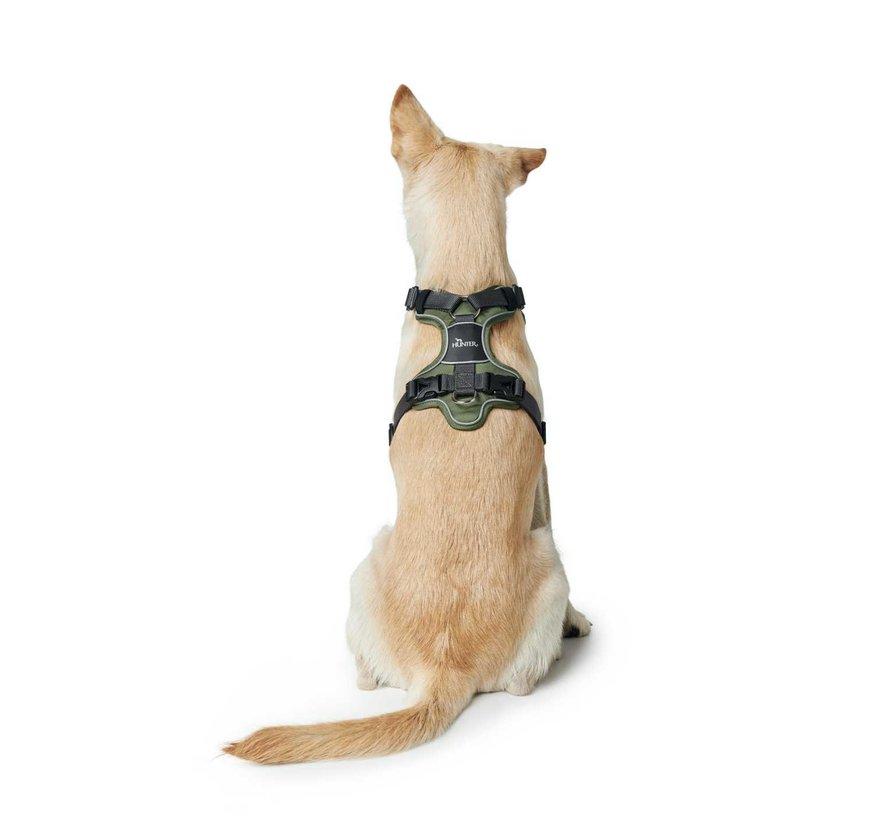 Dog Harness Divo Green