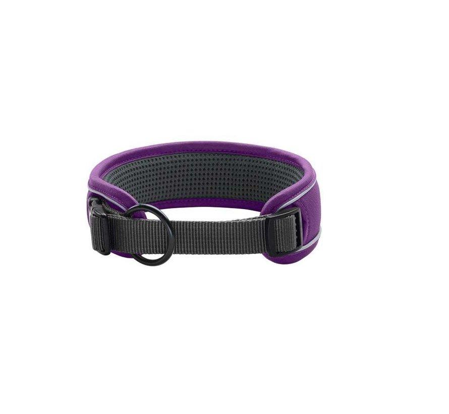Dog Collar Divo Violet