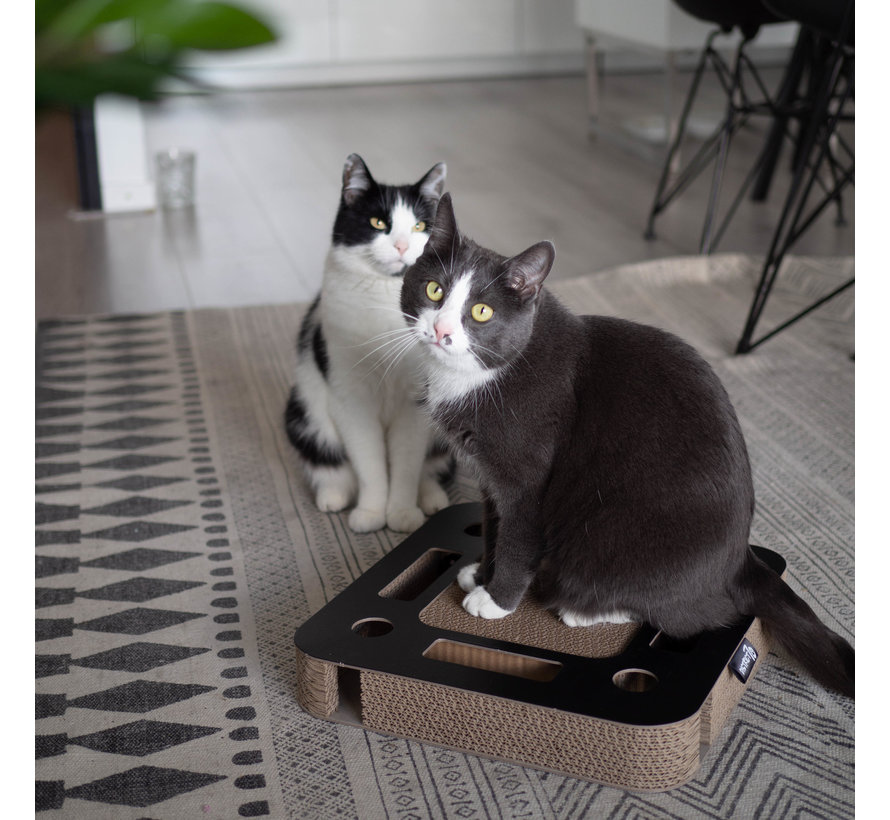 Cat Toy Spy Black