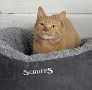 Scruffs Cat Bed Cozy