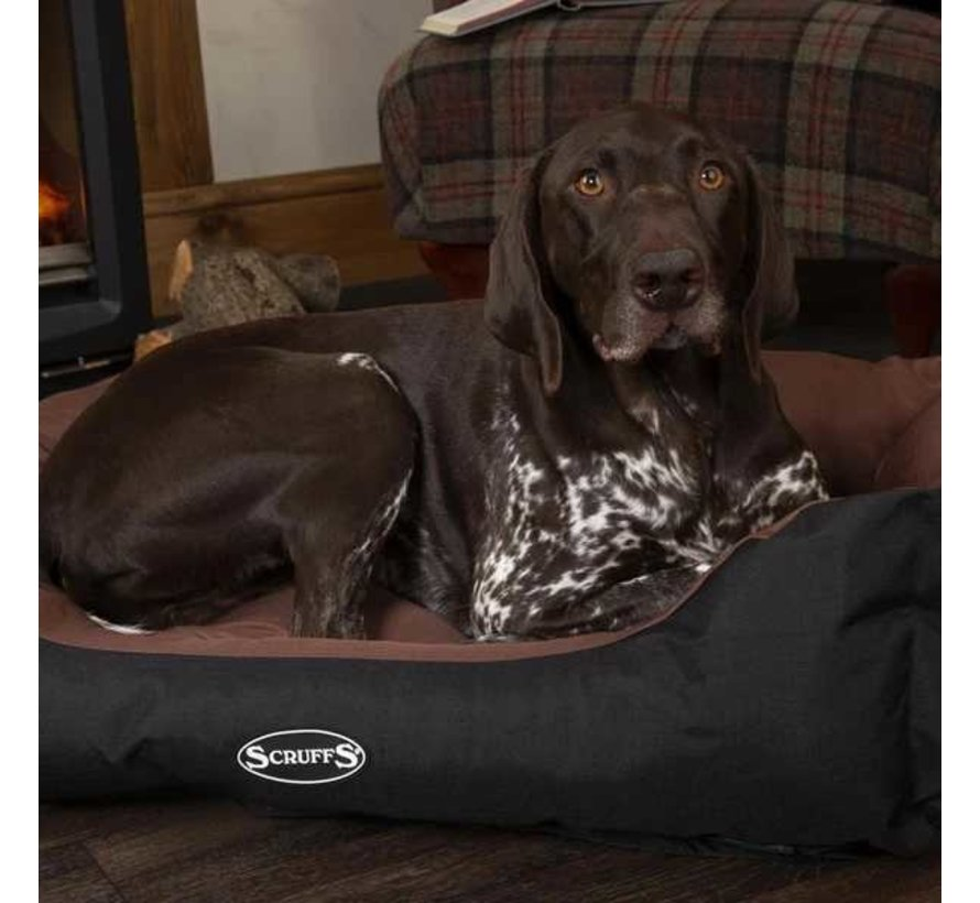 Dog Bed Expedition Chocolate