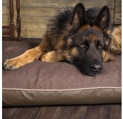Scruffs Orthopedic Dog Cushion Hilton Chocolate