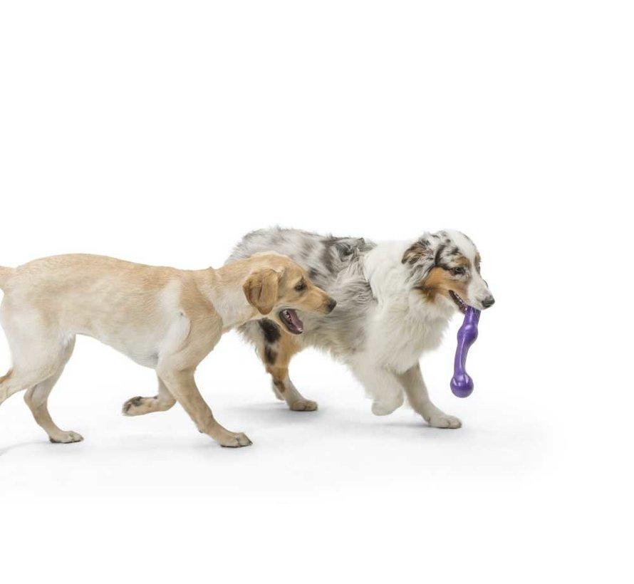 Dog Toy Echo Zwig Purple