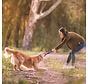 Hondenspeelgoed Echo Zwig Paars