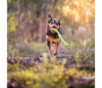 West Paw Design Dog Toy Echo Zwig Green