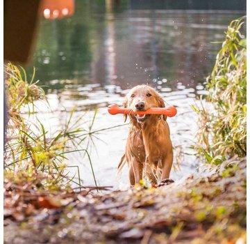 West Paw Design Dog Toy Echo Zwig Orange
