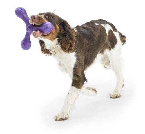 West Paw Design Dog Toy Echo Skamp Purple