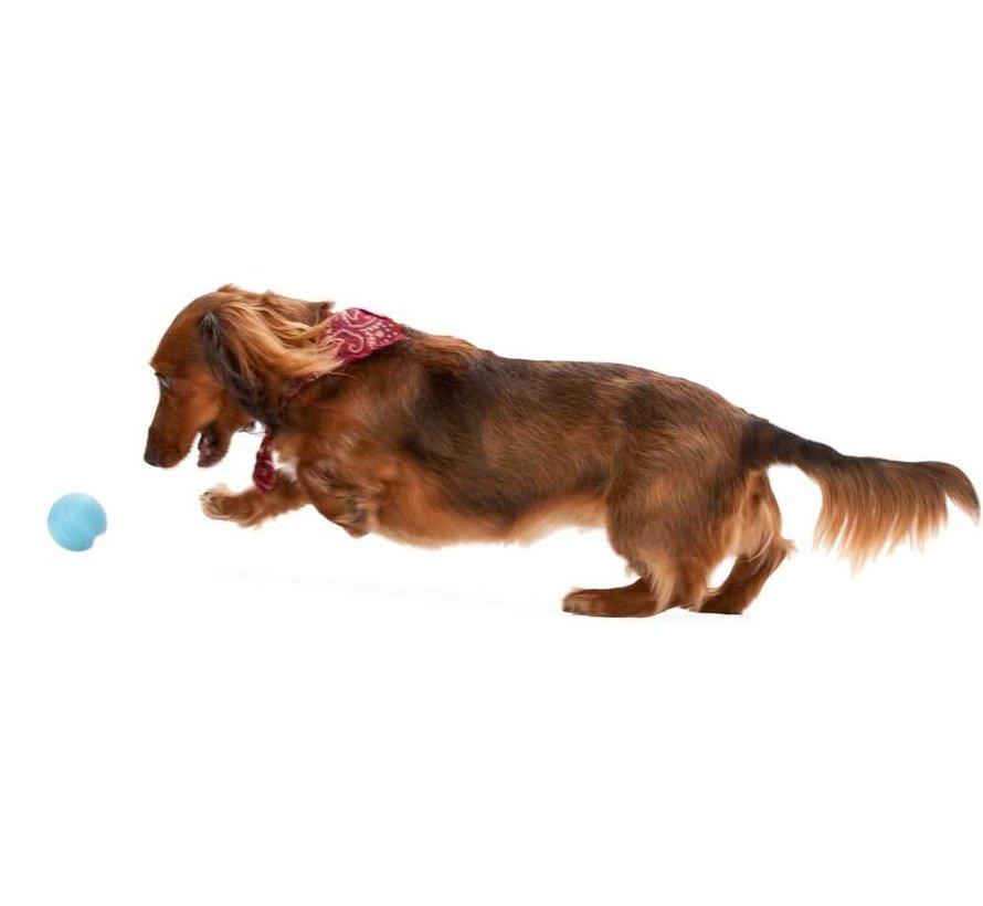 Hondenspeelgoed Zogoflex Jive Aqua