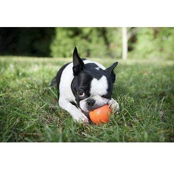 West Paw Design Dog Toy Zogoflex Jive Orange